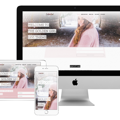 buy divi child theme