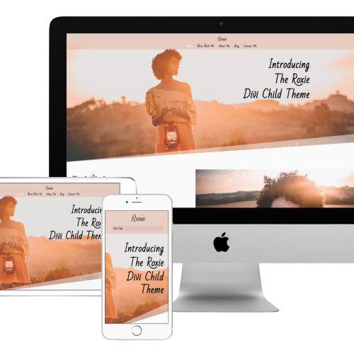 divi child theme for sale